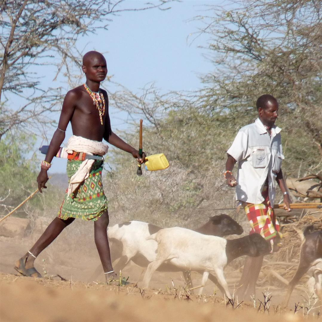 overview of pastoralism essay Overview active research  our long-term program on the future of pastoralism in africa will continue to engage senior policy makers in regional organizations to.