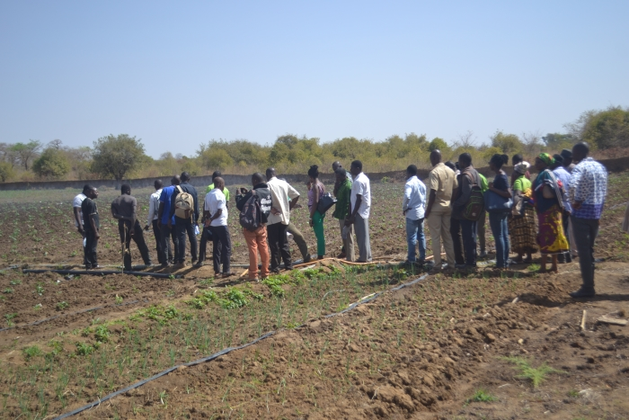The ASSAR Ghana team recently organised a two-day workshop to strengthen irrigation management practices for dry-season farming in the Nandom and Lawra districts. (Photo by Kwame Asante.)